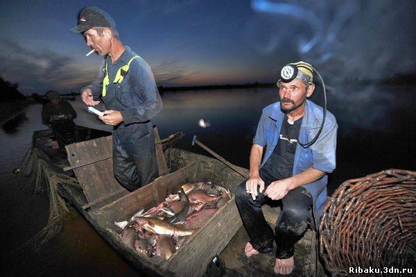 ловля рыбы на сети какое наказание