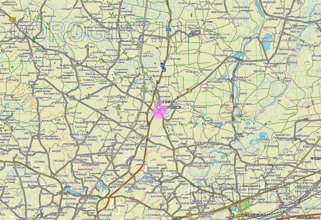 Карта Смолевичского Района Подробная Спутник